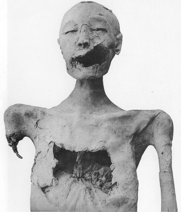 Mumie KV35 YL.