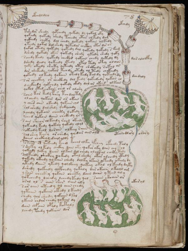 Eine Seite aus dem kryptischen Voynich-Manuskript.