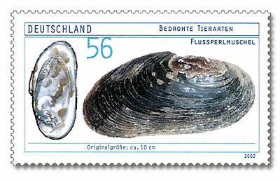 Eine Briefmarke zeigt die Flussperlmuschel, auch wenn dieses Exemplar keine Perlen trägt.